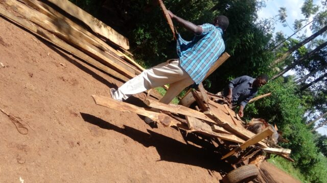 George_unloading_the_timber_from_a_donkey_cart