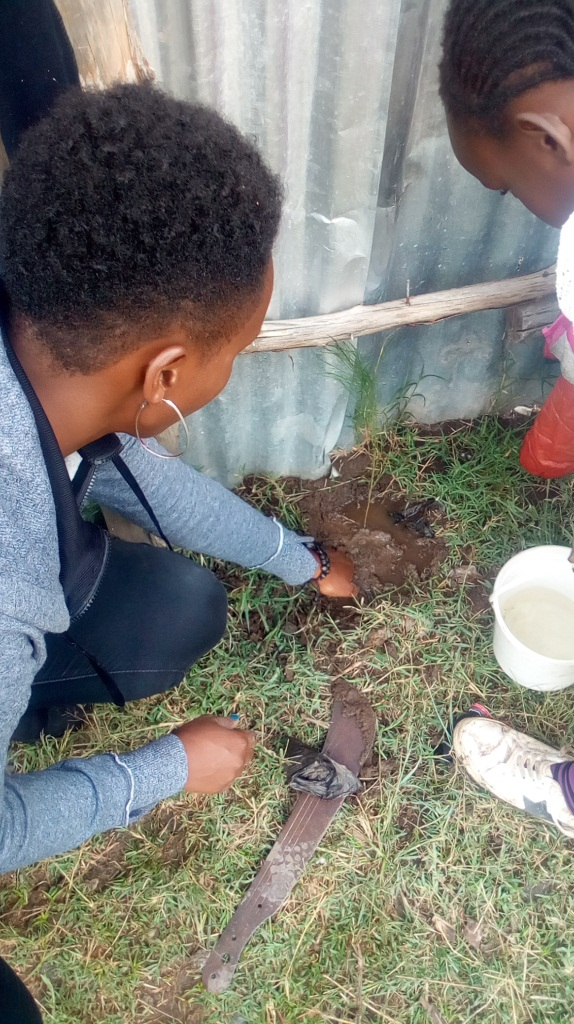 Sharon watering the last tree planted